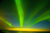 Northern Lights, Beaufort Sea, ANWR, Alaska, USA Photographic Print by Steve Kazlowski
