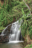 Waterfall Along the Trail to Queens Bath, Lihue, Kauai, Hawaii, USA Photographic Print by Richard Duval