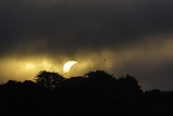 Solar Eclipse, Punihuil, Chiloe, Region Los Lagos, Chile Photographic Print by Fredrik Norrsell