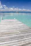 Pier over Clear Waters, Southwater Cay, Stann Creek, Belize Photographic Print by Cindy Miller Hopkins