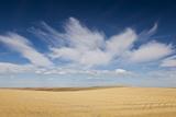 Prairie Landscape, Murdo, South Dakota, USA Photographic Print by Walter Bibikow