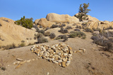 Arrow Through Heart, Joshua Tree NP, California, USA Photographic Print by  Jaynes Gallery