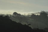 Morning Fog over Farming Landscape, Chiloe, Region Los Lagos, Chile Photographic Print by Fredrik Norrsell