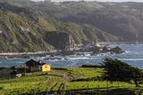 Coastal View, Punihuil, Chiloe, Region Los Lagos, Chile Lámina fotográfica por Fredrik Norrsell