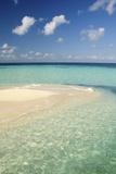 Sandbar, Goff Caye, Belize Fotografisk tryk af Cindy Miller Hopkins