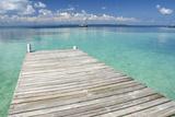 Pier over Clear Waters, Southwater Cay, Stann Creek, Belize Fotografisk tryk af Cindy Miller Hopkins