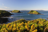 Punihuil Islands Natural Monument, Chiloe, Region Los Lagos, Chile Photographic Print by Fredrik Norrsell