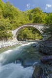 River and Stone Bridge, Rize, Black Sea Region of Turkey Photographic Print by Ali Kabas