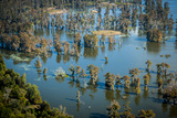 Aerial Photo of Atchafalaya Basin Area, Lake Martin, Louisiana, USA Photographic Print by Alison Jones