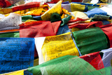 Prayer Flags, Namshangla Pass, Ladakh, India Photographic Print by Ellen Clark