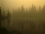 Morning Fog at Reflection Lakes in Mt Rainier National Park, Washington Photographic Print by Jerry Ginsberg