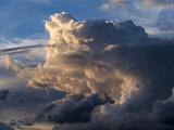 Cloudscape, Lewa Wildlife Reserve, Kenya Photographic Print by Martin Zwick