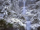 Winter Scenic at Multnomah Falls, Columbia River Gorge, Oregon, USA Photographic Print by  Jaynes Gallery