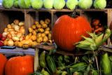 Display of Vegetables, Forsyth Park, Savannah, Georgia, USA Lámina fotográfica por Joanne Wells