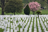 Arlington National Cemetery Headstones, Arlington, Virginia, USA Photographic Print by  Jaynes Gallery