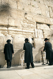 Jewish Orthodox Men Pray at Western Wall, Jerusalem, Israel Photographic Print by David Noyes