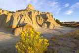 Rabbitbrush and Badlands, Theodore Roosevelt NP, North Dakota, USA Photographic Print by Chuck Haney