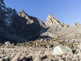 Chogoria Route with Mount Kenya, Mt. Kenya National Park, Kenya Photographic Print by Martin Zwick