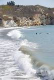 Visitors Enjoying the Ocean, Avila Beach, California, USA Photographic Print by Cindy Miller Hopkins
