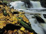 Kitchen Creek and Cayuga Falls in Autumn, Pennsylvania, USA Photographic Print by Charles Gurche