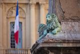 Lion Statues, Hotel De Ville, Arles Provence, France Photographic Print by Brian Jannsen