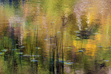 Fall Reflections in the Marsh, Maine, USA Photographic Print by Joanne Wells