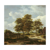Wooded Landscape with Cornfields, C.1655-60 Giclee Print by Jacob Isaaksz. Or Isaacksz. Van Ruisdael