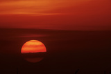 Orange Ball of the Setting Sun, Crescent Beach, Sarasota, Florida, USA Photographic Print by Bernard Friel