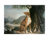 G. M. Johnston's Favourite Gun Dog in a Landscape Giclee Print by J. Francis Sartorius