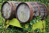 Wine Barrels Sitting in Ivy Grafton, Illinois, USA Photographic Print by Joe Restuccia III