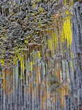 Columnar Basalt Covered with Colorful Lichen, Oregon, USA Photographic Print by  Jaynes Gallery