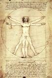 Vitruvian Man, c. 1492 Prints by  Leonardo da Vinci