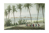 General View of Cadiz, Engraved by John Pye (1782-1874) Giclee Print by J. Taylor