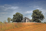 Barn and Field, Missouri, USA Photographic Print by Michael Scheufler