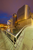 Guggenheim Museum Lit at Night, Bilbao, Spain Photographic Print by  Jaynes Gallery