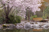Spring Scenic in Lithia Park, Ashland, Oregon, USA Photographic Print by  Jaynes Gallery