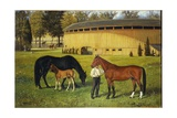 The Training Track on the Fairgrounds, 1887 Giclee Print by Henry H. Cross