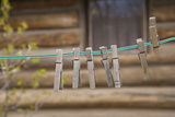 Clothes Pins on a Clothesline Outside Log Cabin, Montana, USA Photographic Print by  Jaynes Gallery