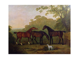 Hunters at Grass Giclee Print by John E. Ferneley