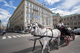 Horse-Drawn Carriage, Vienna, Austria Photographic Print by Jim Engelbrecht