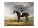 Cadland', 1830 Giclee Print by John E. Ferneley