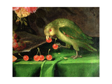 Still Life of Fruit and Flowers, Detail of a Parrot (Detail) Giclee Print by Jan Davidsz. de Heem