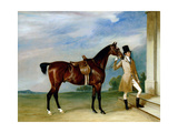 Miss Villebois' Bay Hunter Held by a Groom, 1834 Giclee Print by John E. Ferneley