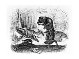 The Wolf and the Hunter, Illustration for 'Fables' of La Fontaine, Published by H. Fournier Aine,… Giclee Print by J.J. Grandville