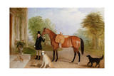 A Groom with a Horse Giclee Print by John E. Ferneley