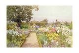 The Lily Border at Great Tangley Manor, Surrey Giclee Print by Thomas H. Hunn