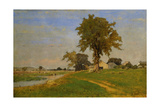 Old Elm at Medfield, 1860 Giclee Print by George Snr. Inness