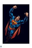Superman: Superman Prints