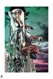 Batman: Catwoman and Harly Quin Crouching on the Side of a Building Together Poster