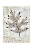 Silver and Oak Reprodukcje autor Ariane Morey